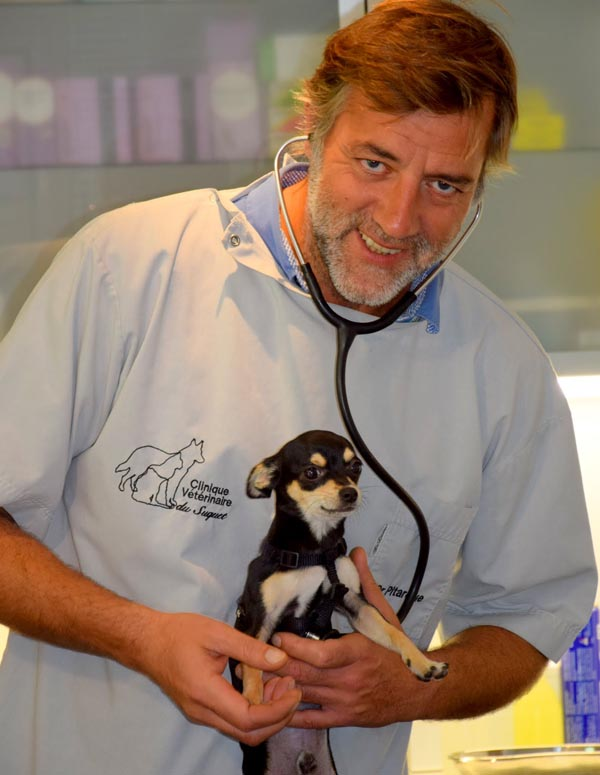 Dr Pitarque